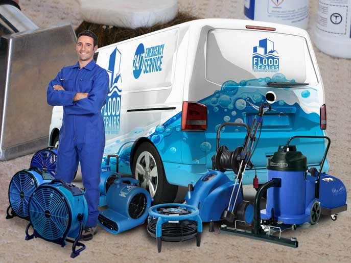 odour removal and bacteria cleaning van machine img