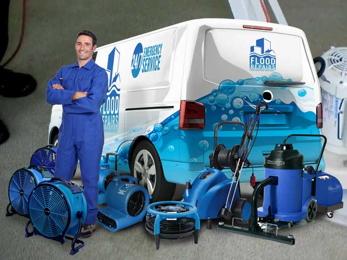 vapour steam cleaning van machine img