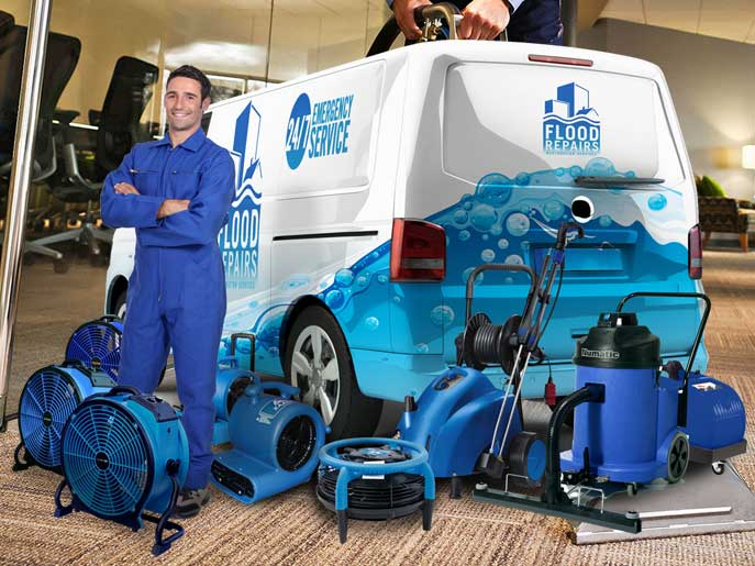 wet carpet cleaning van machine img