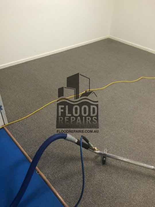 best cleaning carpets equipments