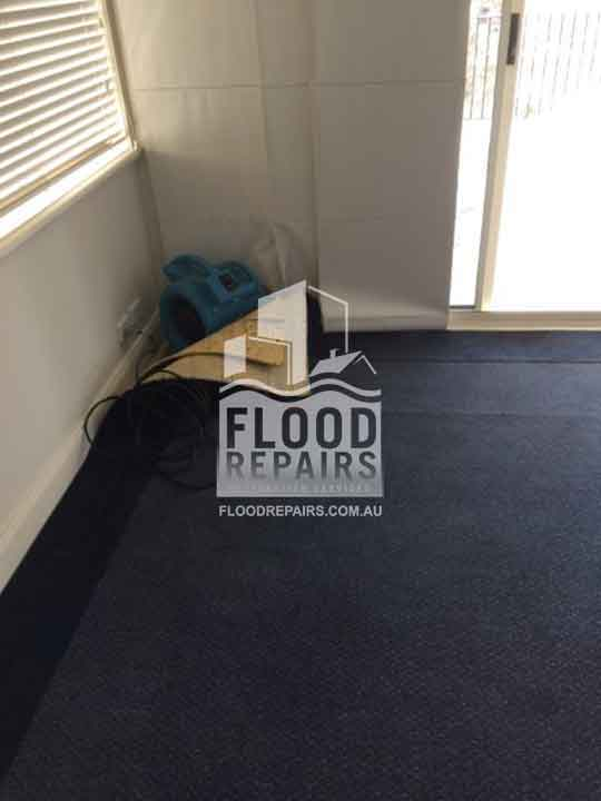 black cleaned carpet after flood repairs job
