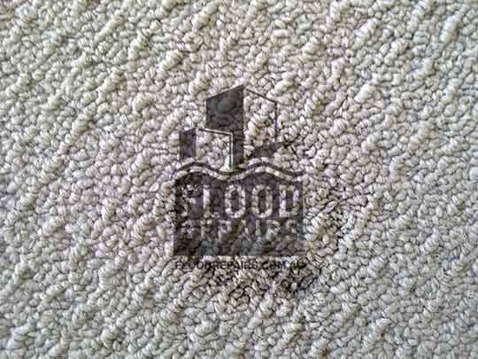 Playford carpet damage before repaired