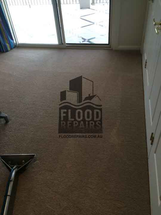 cleaned carpet after flood repairs work