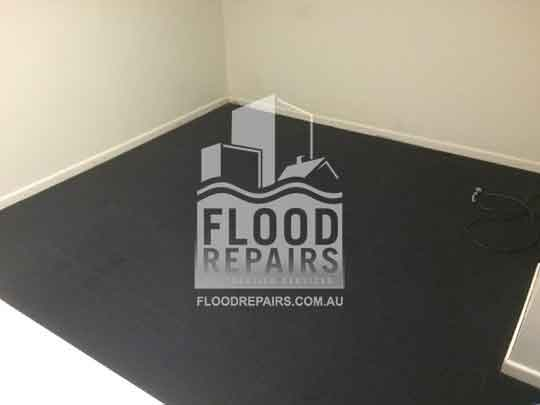 Hobart cleaned black carpet after finishing flood repais work