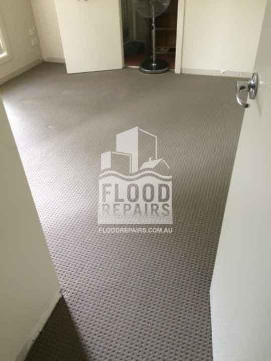 Brisbane cleaned carpet flood repairs job