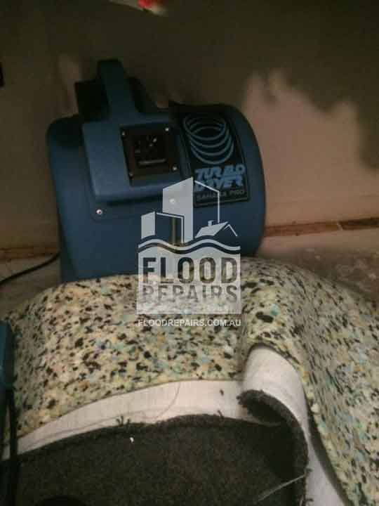 Parkinson cleaning carpet during flood repairs job