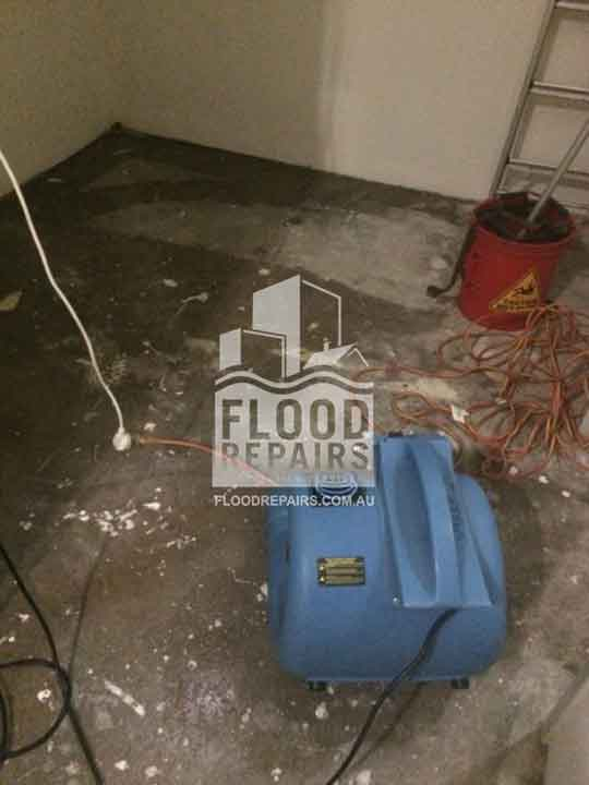 Beaumon damaged floor after flood need to be repaired