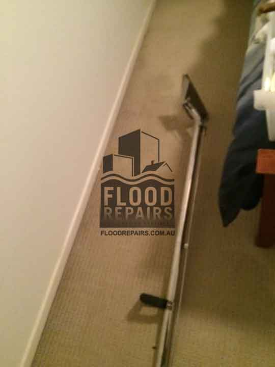 Adelaide during flood repairs carpet cleaning