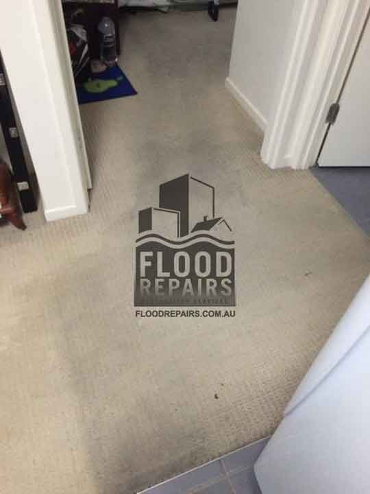Beaumon water carpet damage before repairing