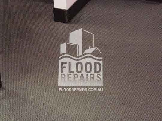 Molonglo-Valley wet damage carpet