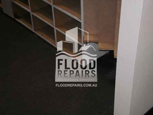 Adelaide wood damage repair