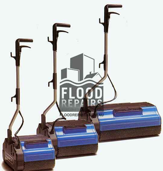 carpet cleaning equipment for rent