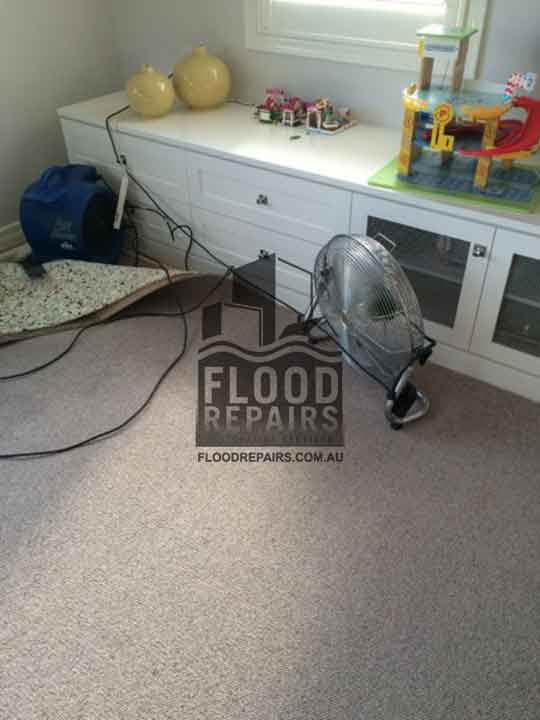 carpet cleaning Flood Restoration & Repairs job
