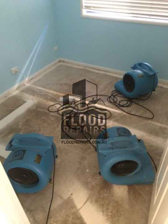 drying floor and carpet equipment