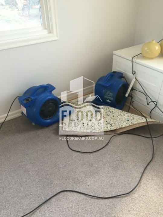 flood job cleaning carpet with equipments