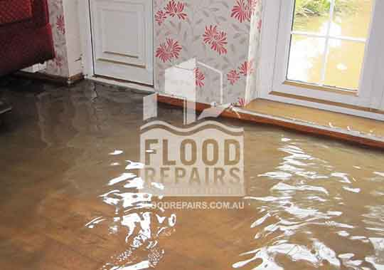 flooded home needed emergency response