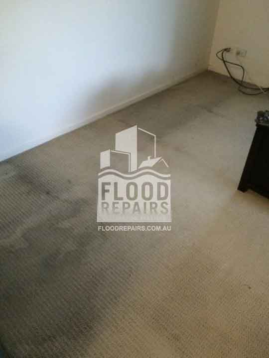 flooded wet carpet