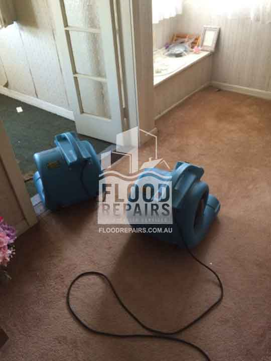 wet carpet before using Flood Restoration & Repairs equipment