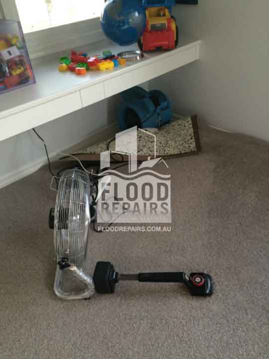 wet carpet before Flood Restoration & Repairs drying and cleaning job